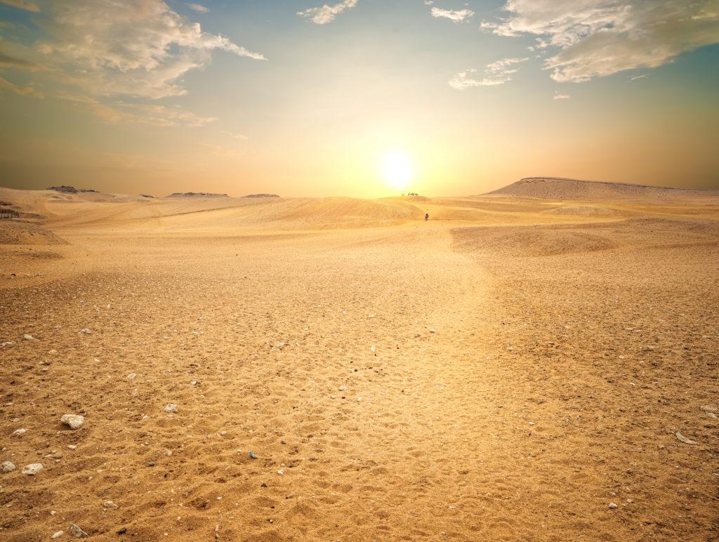 wueste-aegypten