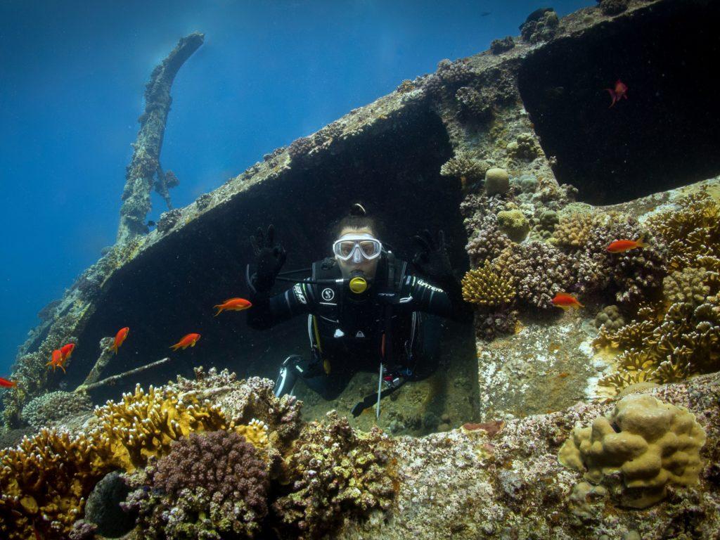Neues vom Roten Meer der letzten Woche