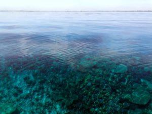 Hinein ins 28 Grad warme Wasser