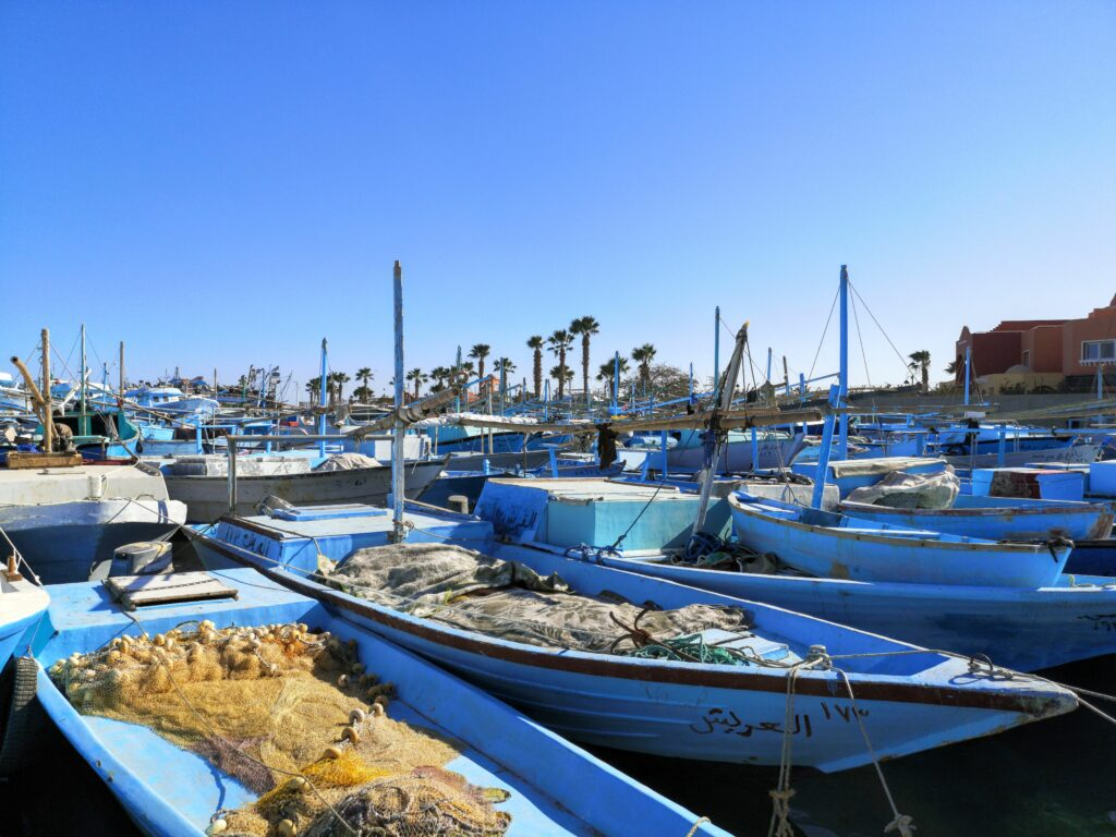 Immer Samstags aus Hurghada: Unser Rückblick